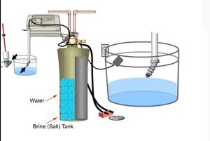 Excessive Salt in Tank